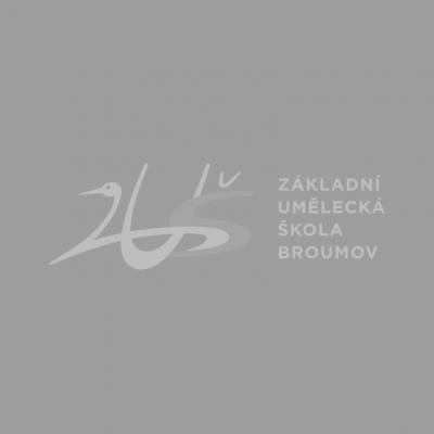Další úspěchy žáků broumovské ZUŠ na celostátních soutěžích.